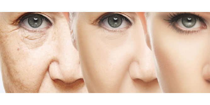 4Ever Young Anti-Aging Solutions Franchise: 2021 Cost, Fees & Facts | FranchiseOpportunities.com
