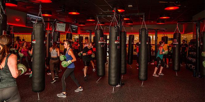 Level Red Boxing slide 7