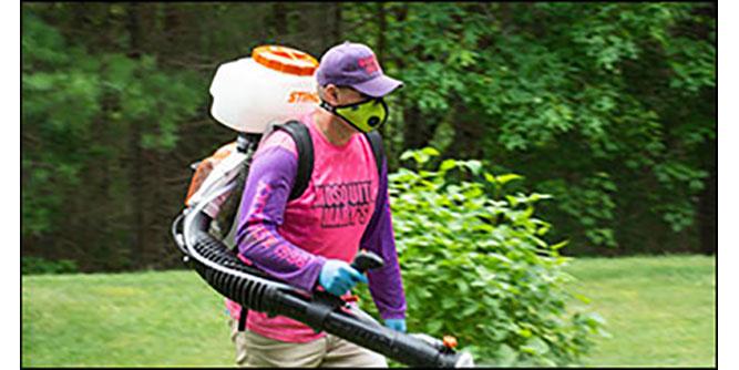 Mosquito Mary's slide 3