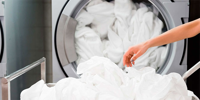 Mr Jeff - Laundry Franchise slide 8