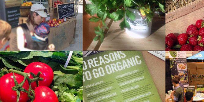 Organics Live slide 4