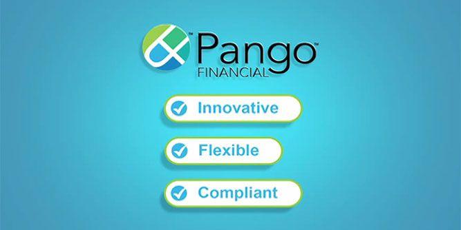 Pango Financial slide 5
