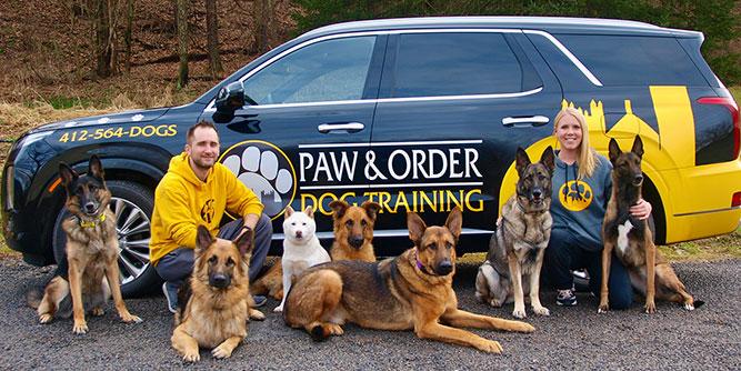 Paw & Order - Dog Training slide 1