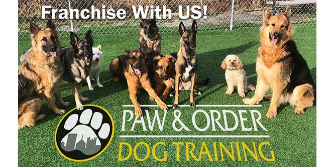 Paw & Order - Dog Training slide 3