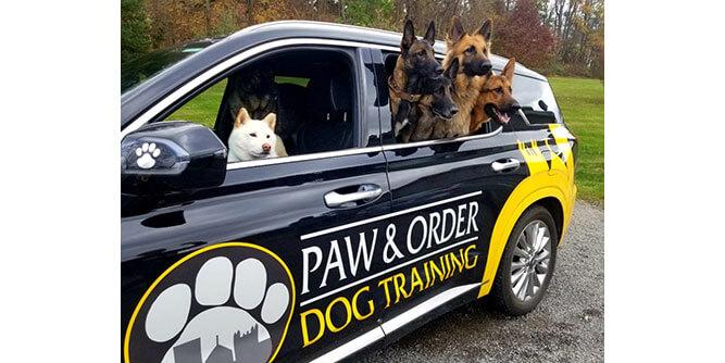 Paw & Order - Dog Training slide 5