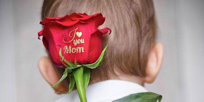 Speaking Roses slide 10