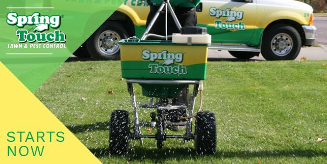 Spring Touch Lawn & Pest Control slide 5