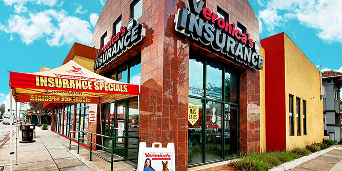 Veronica's Insurance slide 6