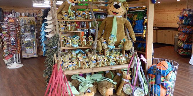 Yogi Bear's Jellystone Parks Camp-Resorts slide 5