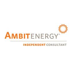 Ambit Independent Consultant