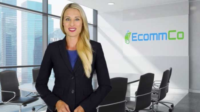 EcommCo Business Information